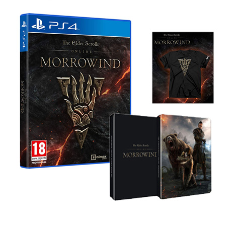 The Elder Scrolls Online Morrowind - PS4 Game gaming games paixnidia ps4